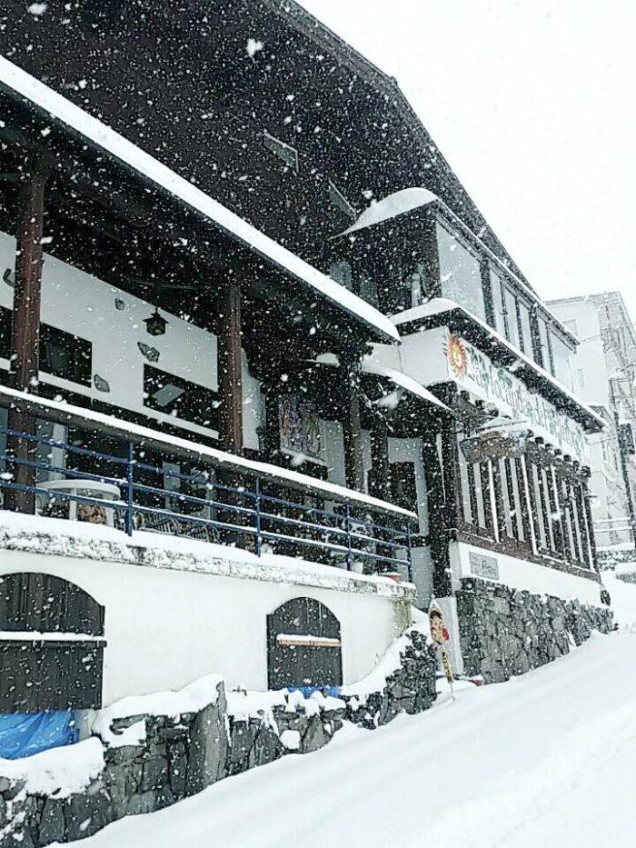 ピットーレ岩原本店 雪 積もりました。