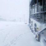 ピットーレ岩原本店 12/28 雪で通行できません。P3へ駐車お願いします。