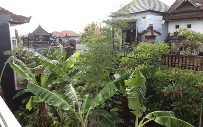 2020 Felice Anno Nuovo! from Bali Indonesia