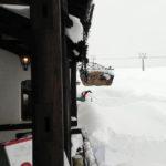 ピットーレ岩原本店 本日12/21ランチもディナーも通常営業!