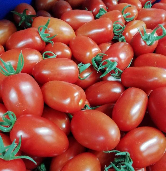 ピットーレ岩原本店 湯沢の滝の又産トマト「アイコ」のマリナーラ